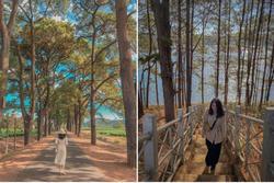 Check-in cảnh đẹp Gia Lai dịp Tết Dương lịch