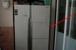 Giải cứu 2 đứa trẻ khỏi tay ác mẫu, hé lộ tội ác của người mẹ nhét con vào tủ lạnh
