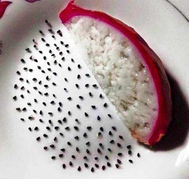 Những pha rảnh rỗi sinh nông nổi, hết ngồi phân loại hạt trong gói cà phê đến tách hạt thanh long-10