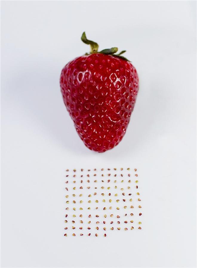 Những pha rảnh rỗi sinh nông nổi, hết ngồi phân loại hạt trong gói cà phê đến tách hạt thanh long-11