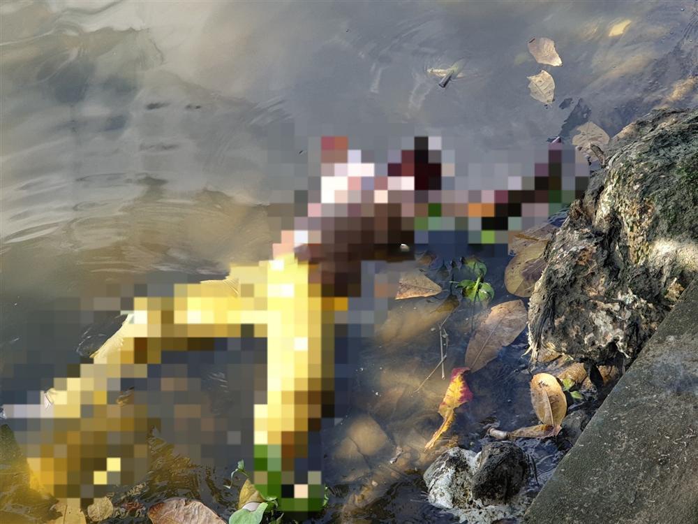 Rợn người phát hiện thi thể phụ nữ mất nửa đầu nổi trên sông Sài Gòn-1