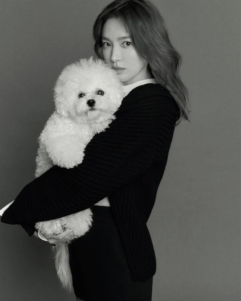Song Hye Kyo xác lập kỷ lục trên bìa tạp chí-4
