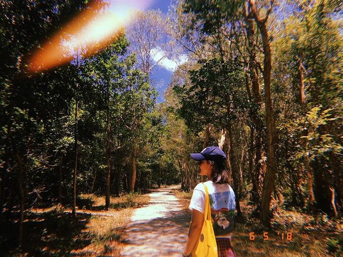 Chỉ muốn xách balo và đi ngay khi nghe tên 4 khu rừng đẹp xuất sắc này-16