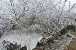 Miền Bắc đón đợt rét đậm nhất từ đầu mùa, vùng núi cao có thể xuống dưới 1 độ C