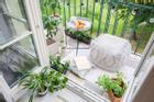 3 nguyên tắc vàng khi trồng cây phong thủy ở ban công chung cư để hút tài lộc vào nhà