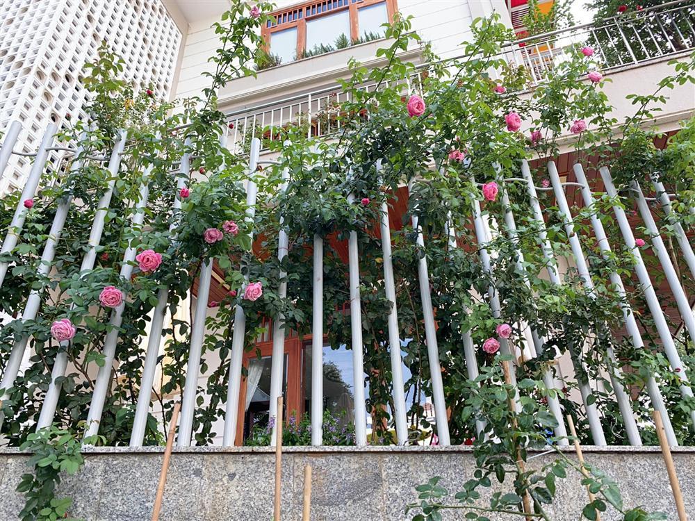 Biệt thự sang chảnh ngập sắc hoa của Quý Bình và vợ đại gia-2