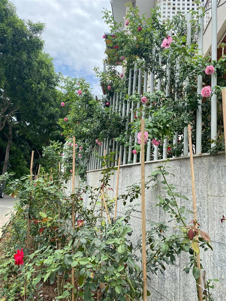Biệt thự sang chảnh ngập sắc hoa của Quý Bình và vợ đại gia-1