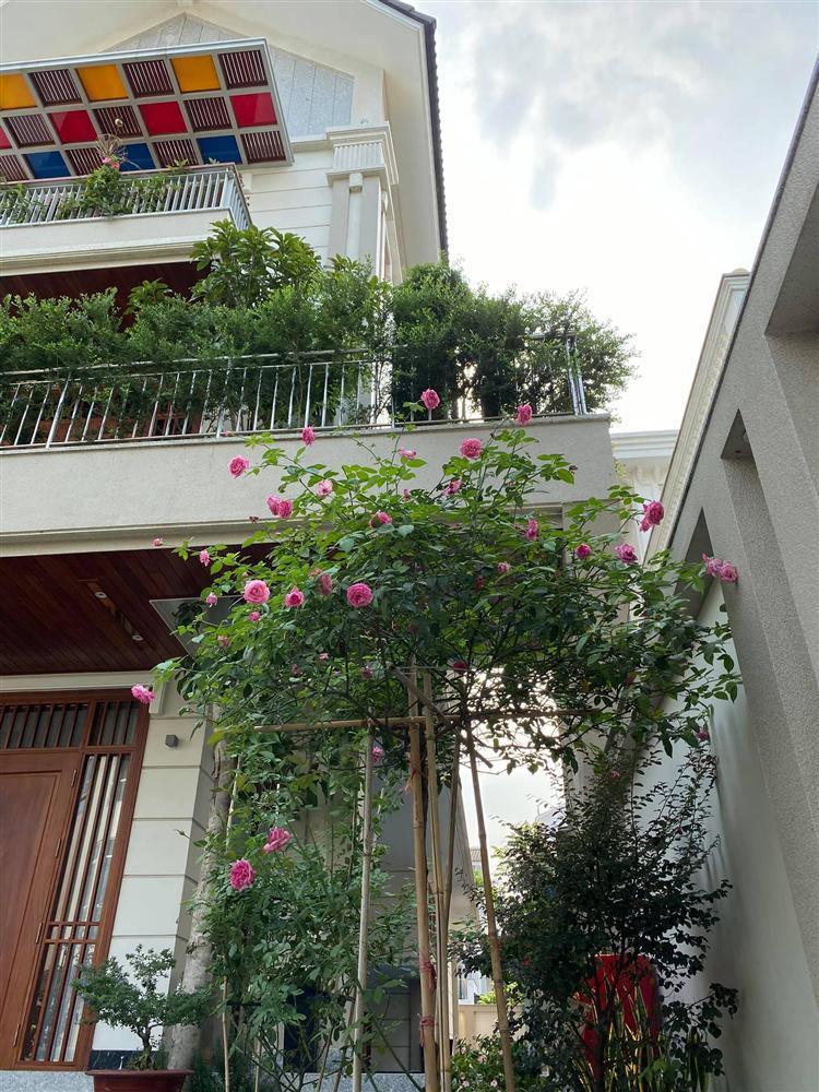 Biệt thự sang chảnh ngập sắc hoa của Quý Bình và vợ đại gia-12