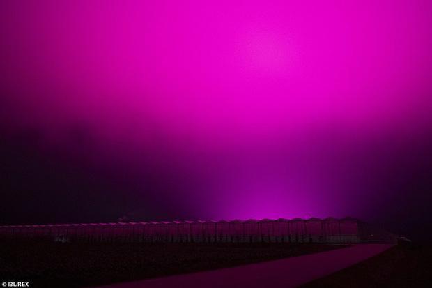 Bầu trời Thụy Điển bất ngờ chuyển sang màu tím lạ-3