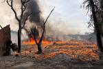 Cháy lớn lán gửi xe gần chung cư Xa La - Hà Đông-4