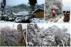 Thử một lần chịu rét để ngắm những thiên đường băng tuyết cực đẹp ở Việt Nam