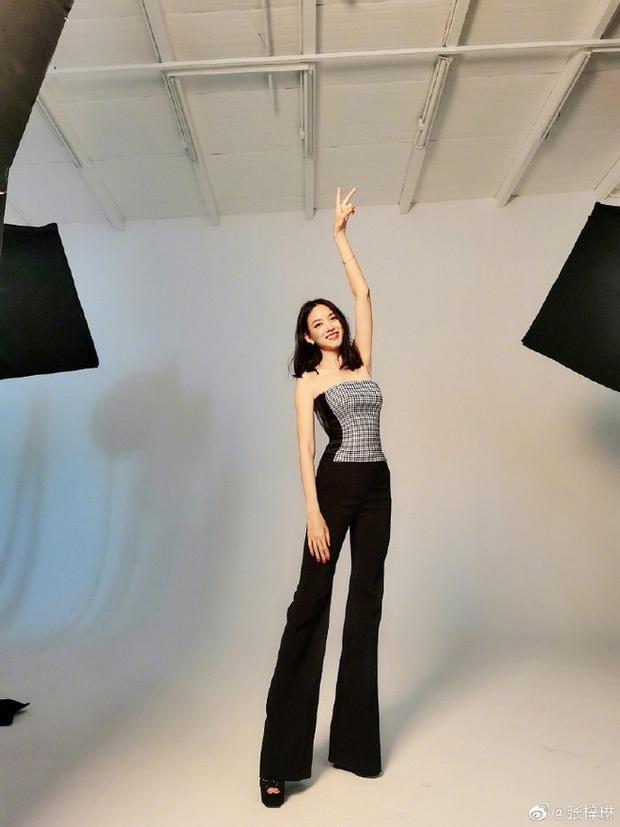 Đời đối lập của Hoa hậu Thế giới Trương Tử Lâm và Vu Văn Hà-3