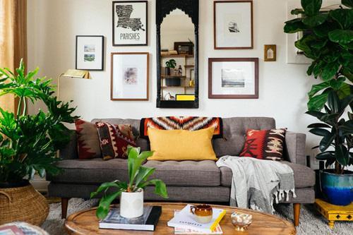 Lựa chọn cây phong thủy bài trí trong nhà, xua tà khí, mang lại may mắn cho gia chủ-3