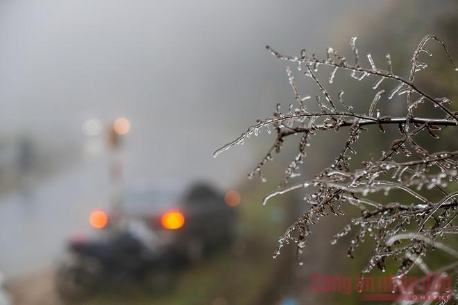Nhiệt độ xuống âm, khách du lịch ùn ùn kéo lên Sapa đợi tuyết-9