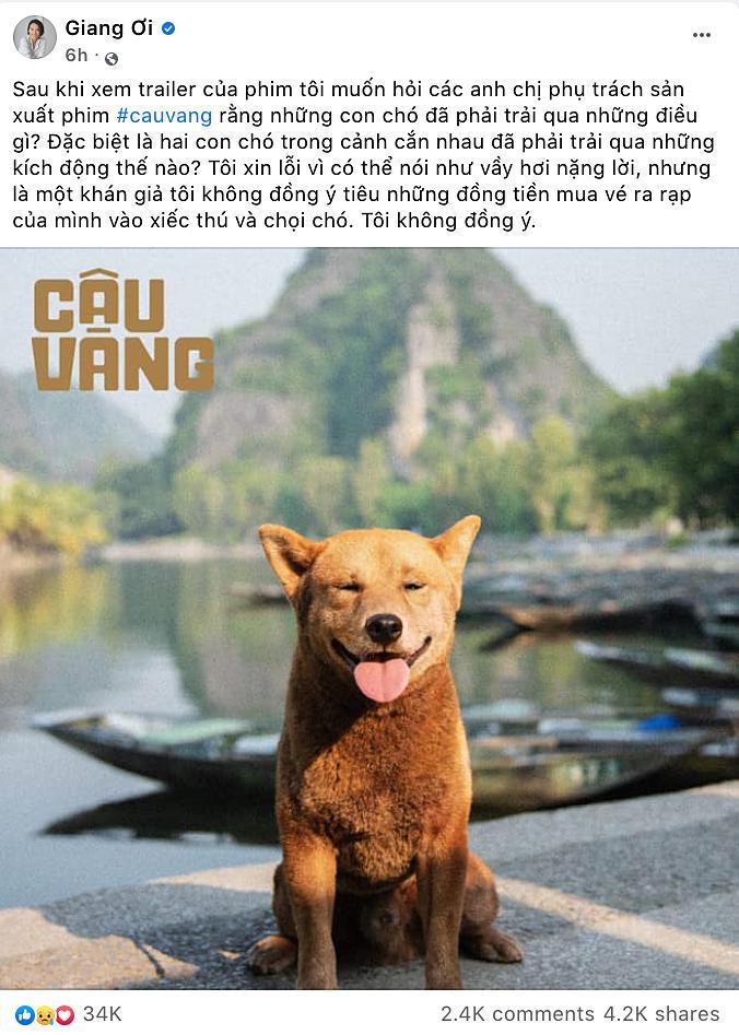 Làng phim Việt nháo nhào vì Cậu Vàng: Khen dè dặt, chê sấp mặt-7