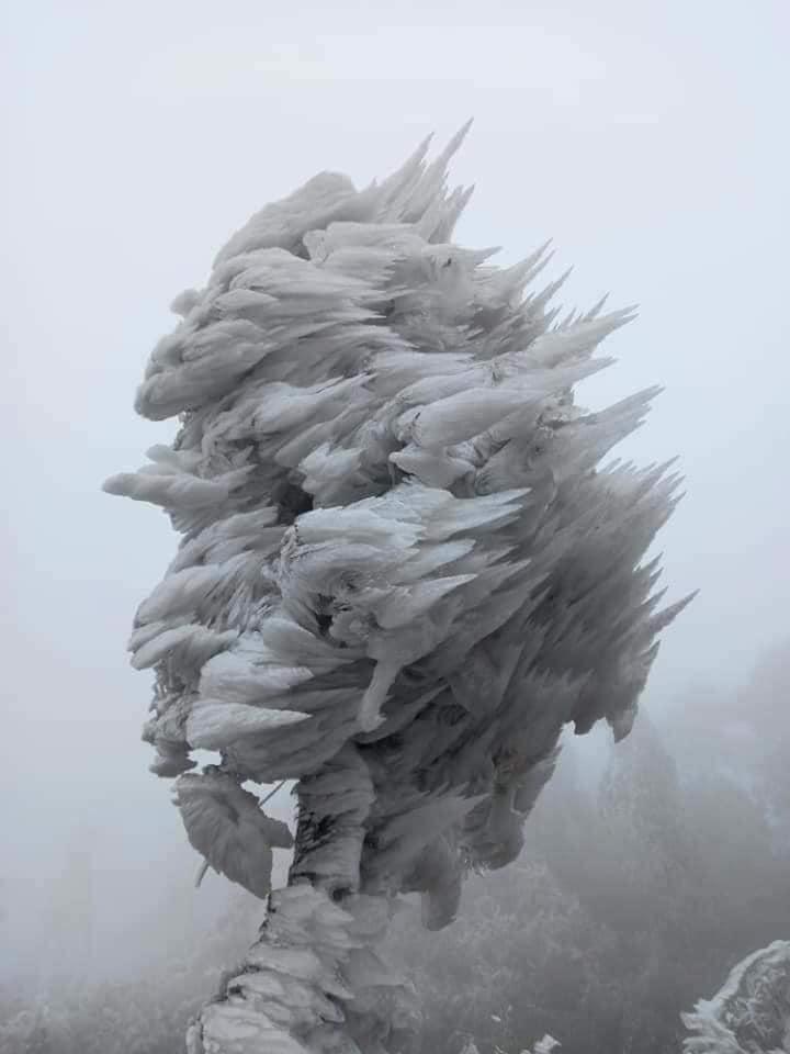 Loạt ảnh tuyết rơi trắng xóa tựa trời Âu tại các điểm du lịch Tây Bắc khiến dân tình phát sốt-1