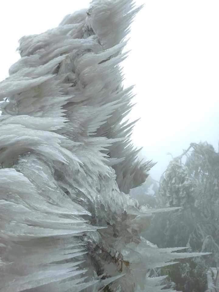 Loạt ảnh tuyết rơi trắng xóa tựa trời Âu tại các điểm du lịch Tây Bắc khiến dân tình phát sốt-3