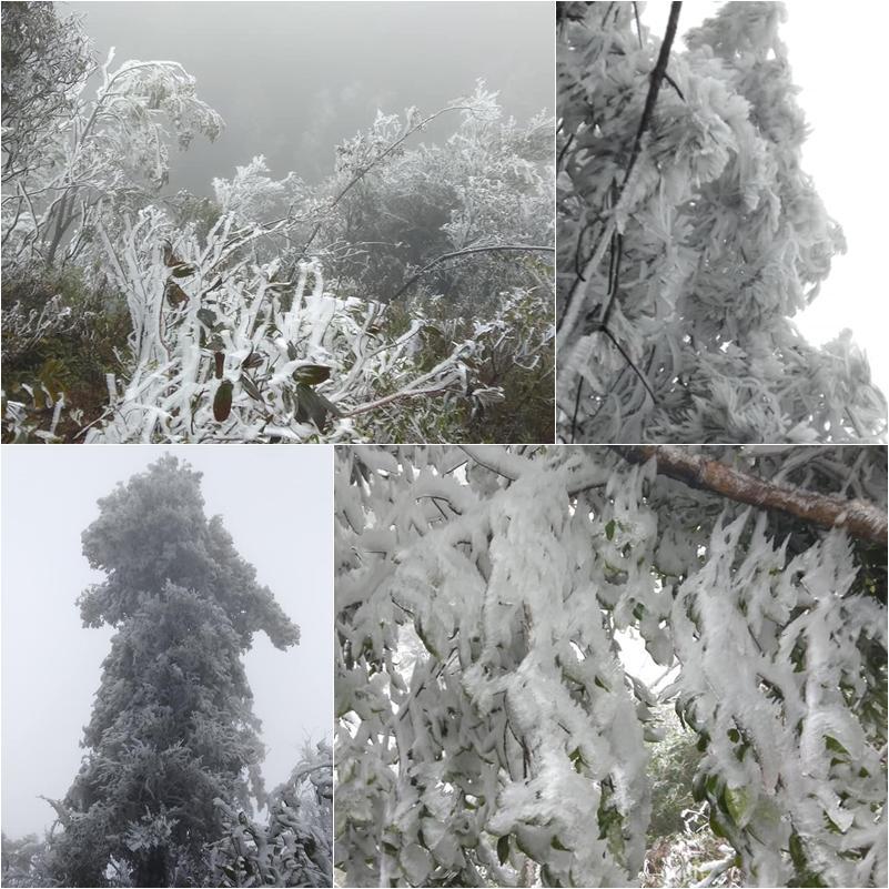 Loạt ảnh tuyết rơi trắng xóa tựa trời Âu tại các điểm du lịch Tây Bắc khiến dân tình phát sốt-5