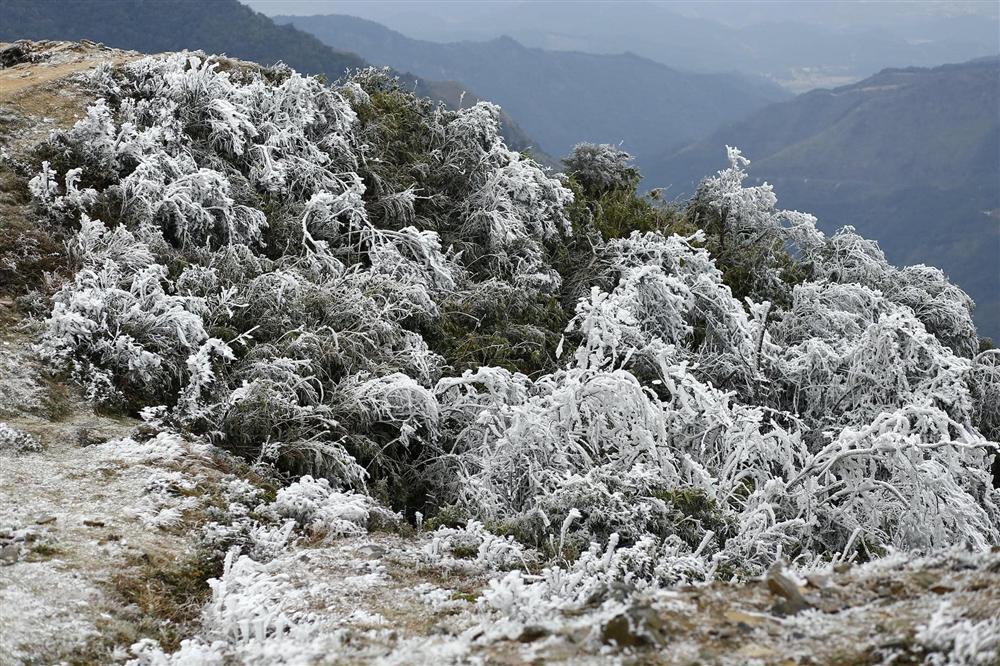 Loạt ảnh tuyết rơi trắng xóa tựa trời Âu tại các điểm du lịch Tây Bắc khiến dân tình phát sốt-9