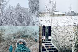 Loạt ảnh tuyết rơi trắng xóa tựa trời Âu tại các điểm du lịch Tây Bắc khiến dân tình 'phát sốt'