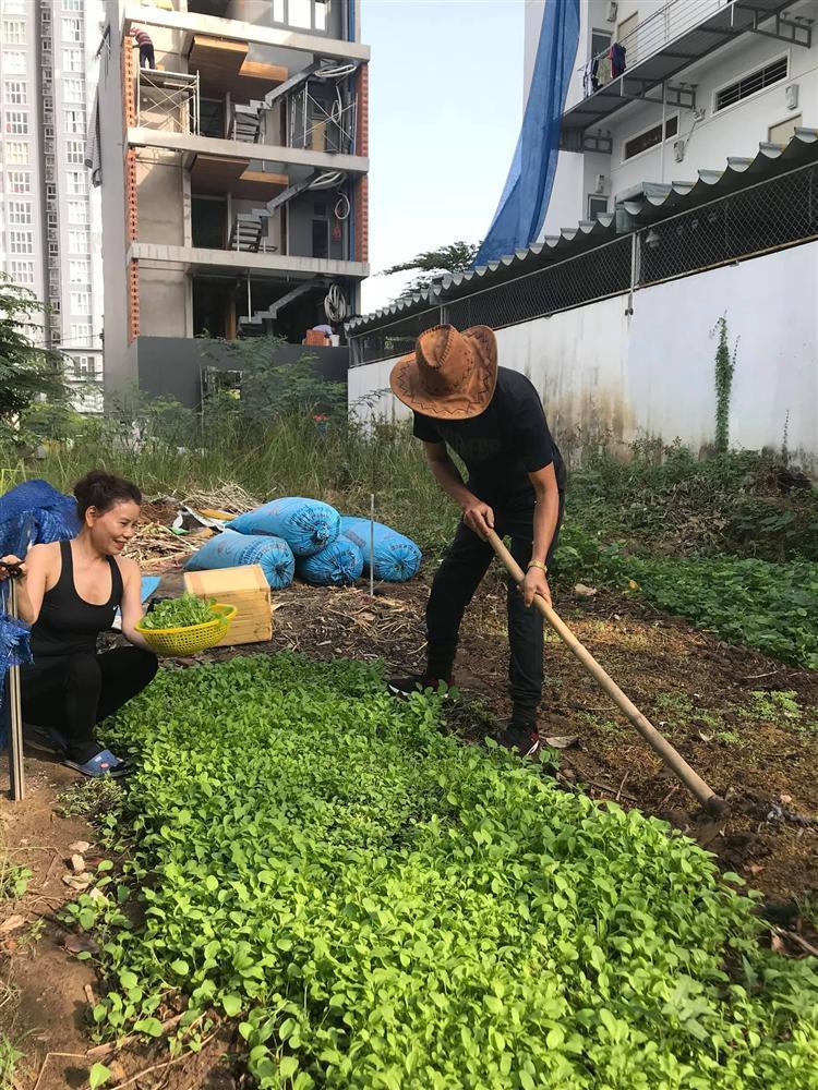 Bố mẹ Hồ Ngọc Hà làm nông dân cuốc đất dù giàu nứt đố đổ vách-3