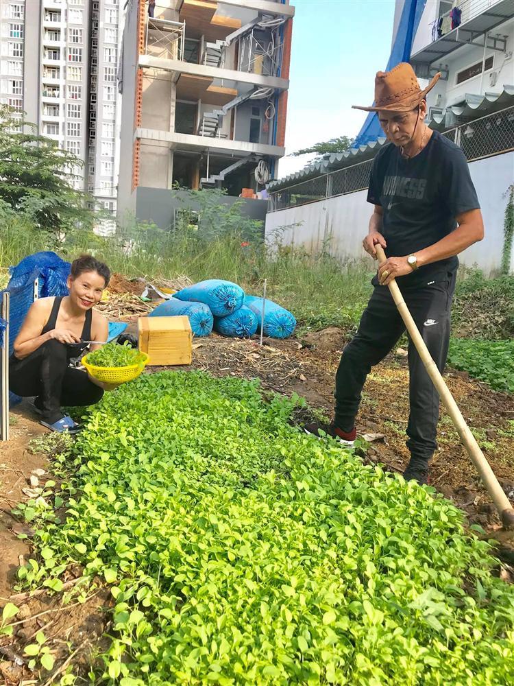 Bố mẹ Hồ Ngọc Hà làm nông dân cuốc đất dù giàu nứt đố đổ vách-4
