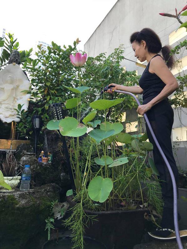 Bố mẹ Hồ Ngọc Hà làm nông dân cuốc đất dù giàu nứt đố đổ vách-8