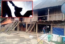 Thảm sát gia đình ở Lai Châu: 3 người chết, 1 người nguy kịch