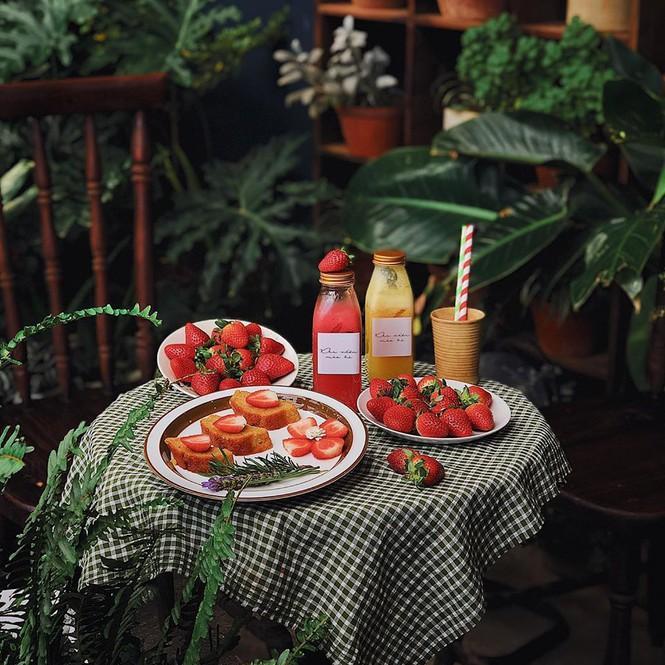 3 quán cafe ở Đà Lạt như đưa du khách lạc vào khu vườn bí mật-4