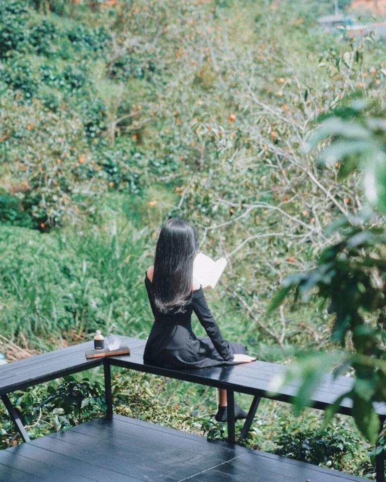 3 quán cafe ở Đà Lạt như đưa du khách lạc vào khu vườn bí mật-6
