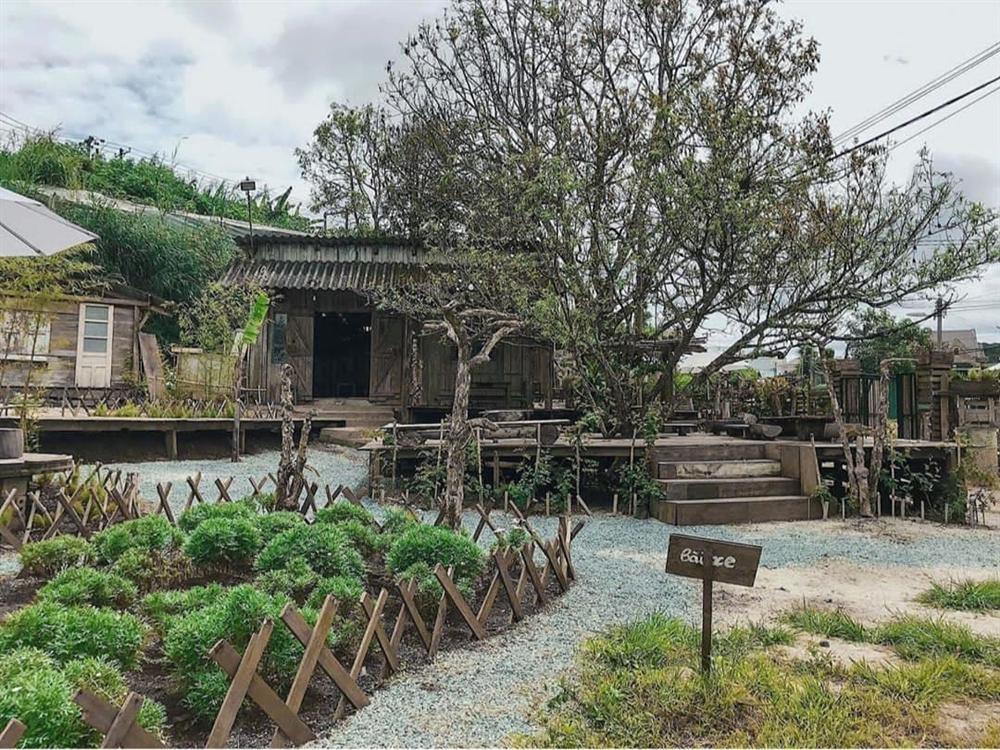 3 quán cafe ở Đà Lạt như đưa du khách lạc vào khu vườn bí mật-9