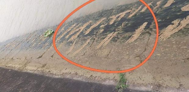 Bé trai lớp 3 ở Nghệ An đuối nước vì lấy dép cho chị: Vết cào níu kéo sự sống-2