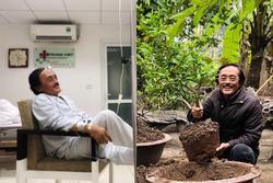 Nghệ sĩ Giang Còi bất ngờ rời bệnh viện về vườn trồng cây