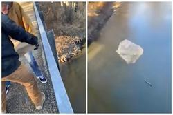 Hai thanh niên ném tảng đá lớn xuống mặt nước đang đóng băng toàn bộ và cái kết khó hiểu