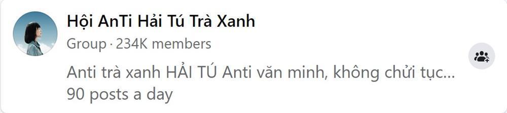 Phốt trà xanh giúp Sơn Tùng tăng 6 triệu follow còn Hải Tú bị lập group anti 234k thành viên-3