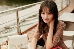 Những bộ phim nào của Trịnh Sảng bị cấm sóng, gỡ bỏ?