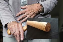 Gạ trai trẻ nhưng bị khước từ, cụ bà 79 tuổi đánh chết trai rồi chôn xác trong vườn