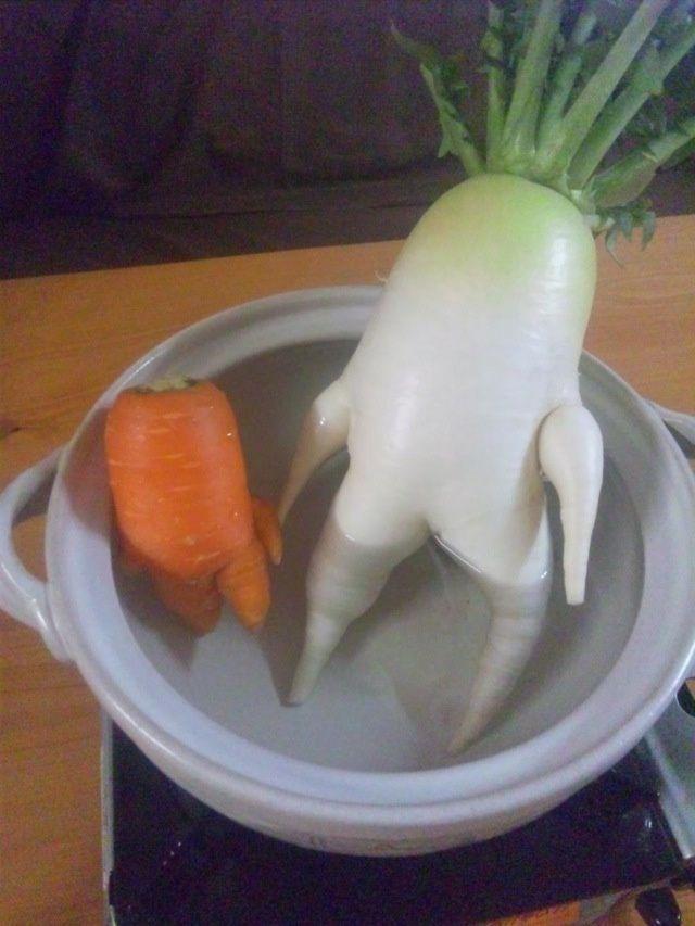 Củ cải trắng tập thể dục đắt hàng tại Nhật Bản-5