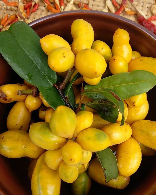 Những loại trái cây Việt Nam tên lạ hoắc, ai biết chắc đã có tuổi thơ quê nhà-5