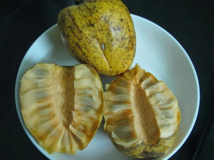 Những loại trái cây Việt Nam tên lạ hoắc, ai biết chắc đã có tuổi thơ quê nhà-9