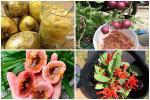 Những loại trái cây Việt Nam 'tên lạ hoắc', ai biết chắc đã có 'tuổi thơ quê nhà'
