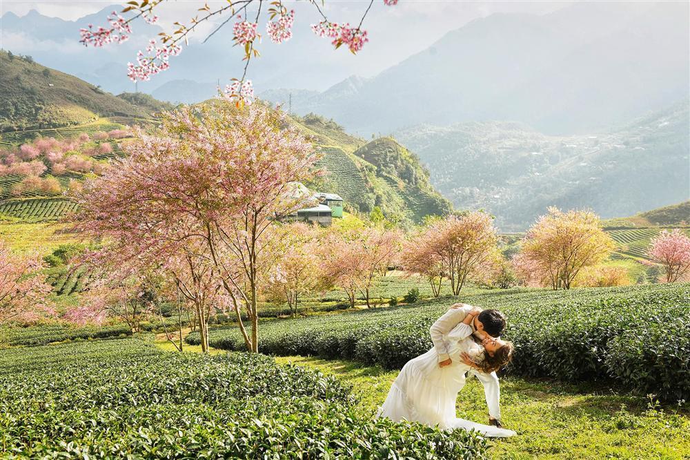 Ảnh hiếm trong đám cưới bí mật của con gái Thanh Lam-5
