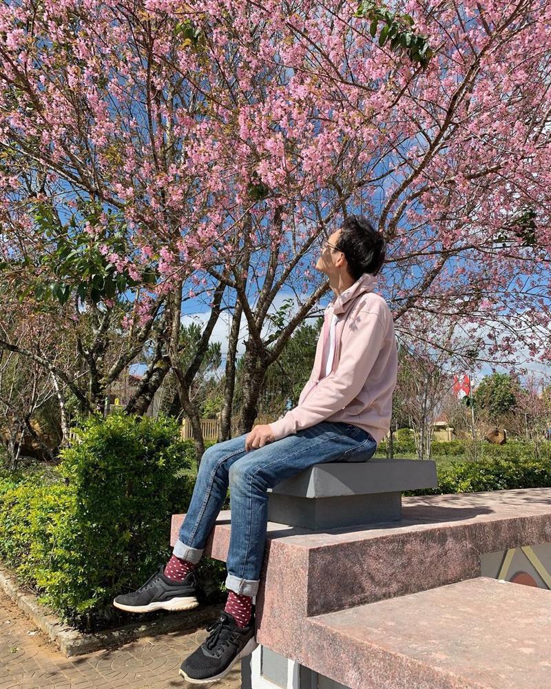 Chẳng cần lên Đà Lạt, Kon Tum cũng có hoa mai anh đào phủ hồng cả bầu trời đây này-7