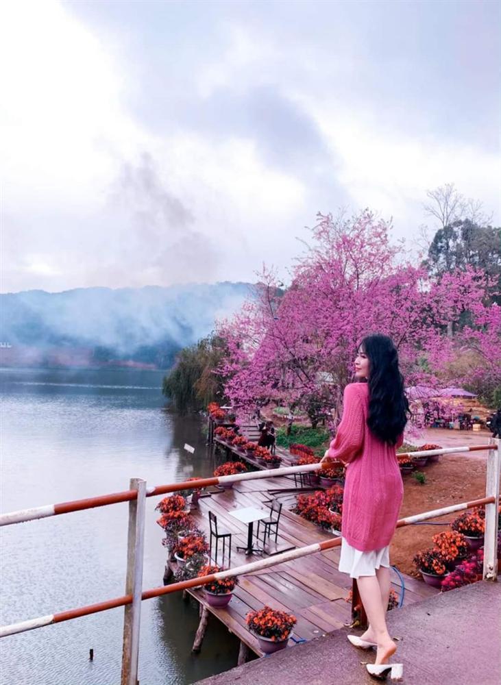 Chẳng cần lên Đà Lạt, Kon Tum cũng có hoa mai anh đào phủ hồng cả bầu trời đây này-8