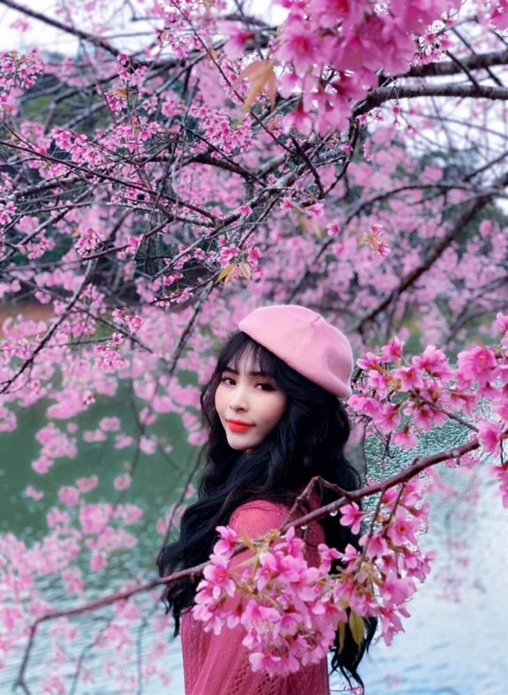 Chẳng cần lên Đà Lạt, Kon Tum cũng có hoa mai anh đào phủ hồng cả bầu trời đây này-10