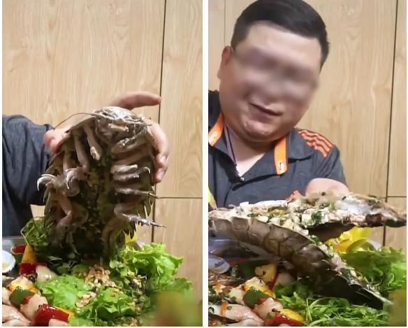 Dân mạng sởn gai ốc với màn review ăn thử món bọ biển khổng lồ giá 4 triệu/con-4
