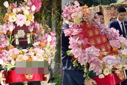 Lóa mắt mâm sính lễ Phan Thành mang đi hỏi cưới Primmy Trương