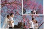 Ngất ngây trước bộ ảnh bên hoa anh đào tại Đà Lạt của cặp đôi 6 năm 'tình bể bình'