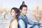 Vì sao Cúc Tịnh Y không muốn hợp tác với Trương Triết Hạn?