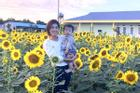 Vườn hoa hướng dương 5.000 cây của Oanh Yến